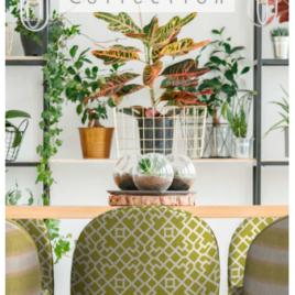 Colección Greenery