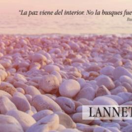 Colección Lannete